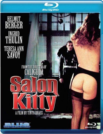 凯蒂夫人Salon
